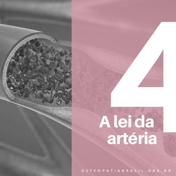 Especial Semana da Osteopatia: 4ª Lei